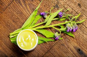 comfrey herb - Symphytum officinale