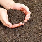 فروش خاک سیلت