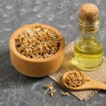 fresh-sprouted-wheat-seeds-and-wheat-germ-oil-922060924-5b05cbc2fa6bcc0037d41669