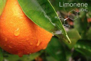 فروش لیمونن